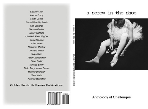 a screw in the shoe Anthology